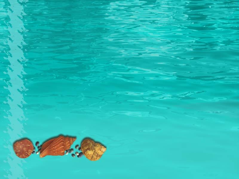 Fondos de mar animados - Imagui